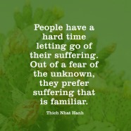 quotes-suffering-fear-thich-nhat-hanh-480x480